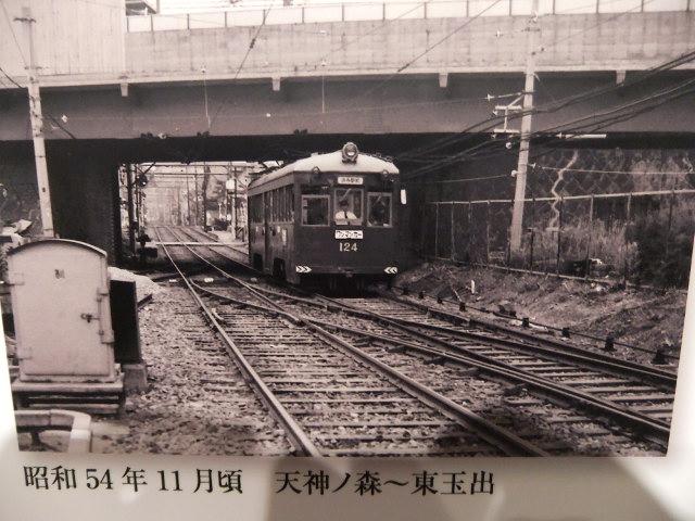 Dscf2251